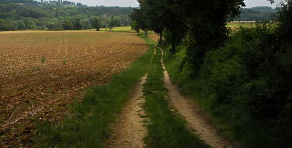 Footpath through the Gers